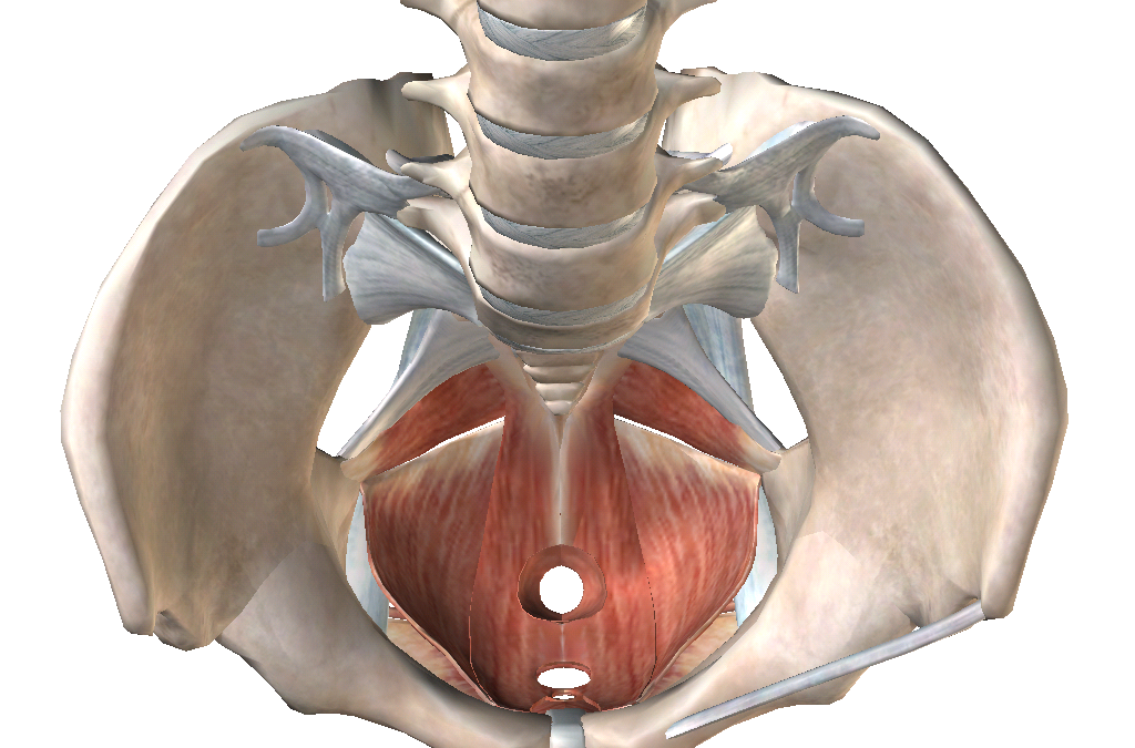 Video: Four ways to heal your perineum after birth
