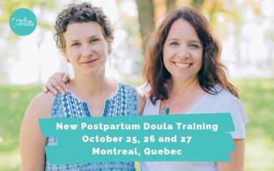 Would you like to become an amazing Postpartum Doula?